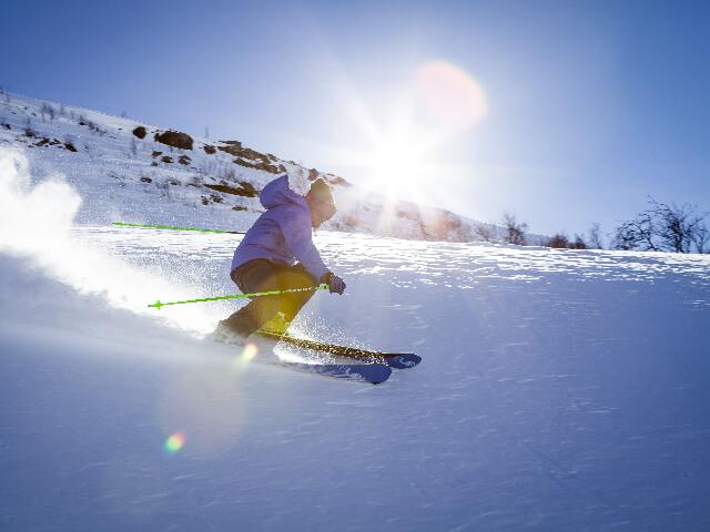 bastones-de-esqui